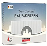 Brubaker 20er Pack Baumkerzen Wachs Weihnachtskerzen Pyramidenkerzen Christbaumkerzen...