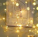 LED Lichterkette,Cshare 3m LED Draht Micro Lichterkette,Micro 30 LEDs Lichterkette AA...