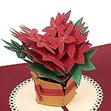 """PaperCrush® Pop-Up Karte Weihnachten """"Weihnachtsstern"""" - 3D Weihnachtskarte für..."""