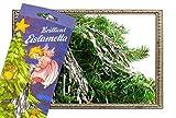 Helmecke & Hoffmann * 10 Gramm Stanniol-Lametta Eislametta Staniol Baumdeko...