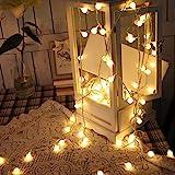 SUPERKIT Globe Lichterkette Warmweiß Außen/Innen LED lichterkette Warmweiß 40LED...
